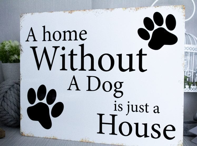 A house without a dog Metal Sign