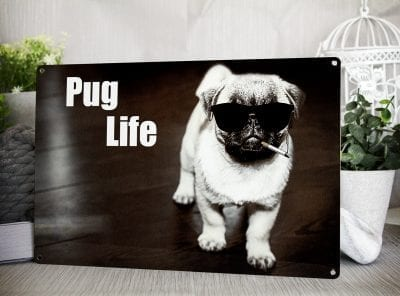 Metal sign with a Pug wearing sunglasses and smoking a cigarette. Words on the sign read Pug Life
