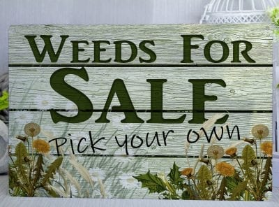 Weeds for sale pick your own Metal Sign