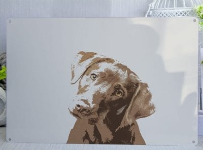 Pop Art Cute Chocolate Labrador Metal Sign