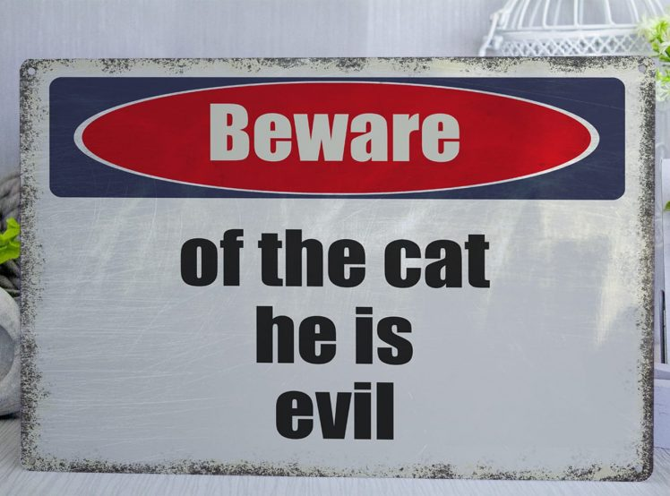 Blue red and white distressed Beware of the cat he is evil Metal Sign