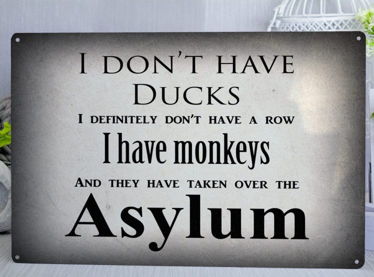 Grey metal sign with the text I don't have ducks, I definitely don't have a row, I have monkeys and they have taken over the asylum